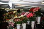 Kiev flower stall